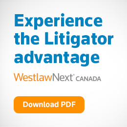 View a Litigator Brochure