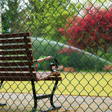 Phrase of the Week - Chain Link Fence